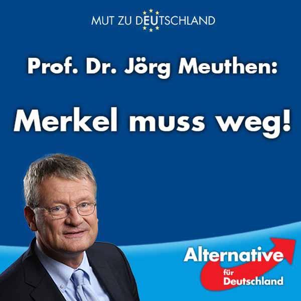 Professor Dr. Jörg Meuthen: Merkel muss weg #Date:04.2016#