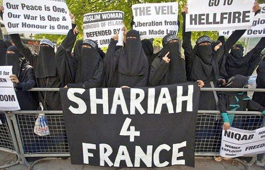 Während in Nizza beim Attentat anlässlich der Feiern zum Nationalfeiertag bei einem Anschlag mit LKW über 80 Todesopfer beklagt werden, plagen die bunten Islamisten in Frankreich ganz andere Sorgen. #Date:#