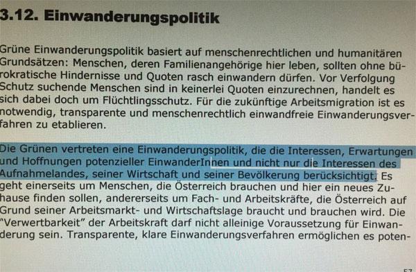 Bild zum Thema Aus dem Grundsatzprogramm der GRÜNEN. Die Interessen von Migranten gehen den Interessen des Aufnahmelandes vor. Liest sich wie der Abschiedsbrief eines Suizidanten.