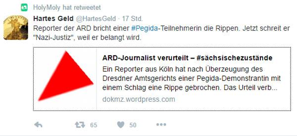 Bild zum Thema ARD-Journalist wegen Körperverletzung verurteilt, weil er bein einer Pegida-Demo einer Frau eine Rippe gebrochen hat.