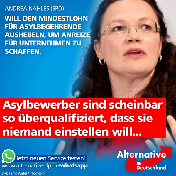 Andrea Nahles (SPD) möchte es Unternehmen versüßen, Asylbewerber einzustellen. Denn weil das bisher nicht so richtig funktioniert, und kaum Asylbewerber in Lohn und Brot kommen, müssen nun Lösungen her: So hält sie es für denkbar, Lohnzuschüsse an Unternehmen zu zahlen, die Asylbewerber einstellen. Und hebelt damit praktisch den Mindestlohn zum Nachteil deutscher Arbeitnehmer aus.  Denn: Wo ein Unternehmer den deutschen Arbeitnehmer selbst und mit Mindestlohn entlohnen muss, verschafft ihm Nahles nun die Möglichkeit, einen aus Steuergeldern subventionierten Asylbewerber einzustellen. Damit entsteht besonders in den Bereichen, in denen keine oder eine nur geringe Qualifkation notwendig ist, Sparpotenzial für Arbeitgeber.  http://www.n-tv.de/ticker/Nahles-ist-Lohnkostenzuschuessen-fuer-Fluechtlinge-nicht-abgeneigt-article18663186.html  #Date:09.2016#