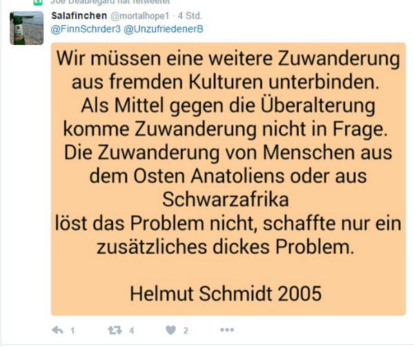 Bild zum Thema Helmut Schmidt SPD im Jahr 2005: Wir müssen eine weitere Zuwendung aus fremden Kulturen unterbinden. Als Mittel gegen die Überalterung komme Zuwanderung nicht in Frage. Die Zuwanderung von Menschen aus dem Osten Anatoliens oder aus Schwarzafrika löst das Problem nicht, schaffe nur ein zusätzliches dickes Problem.