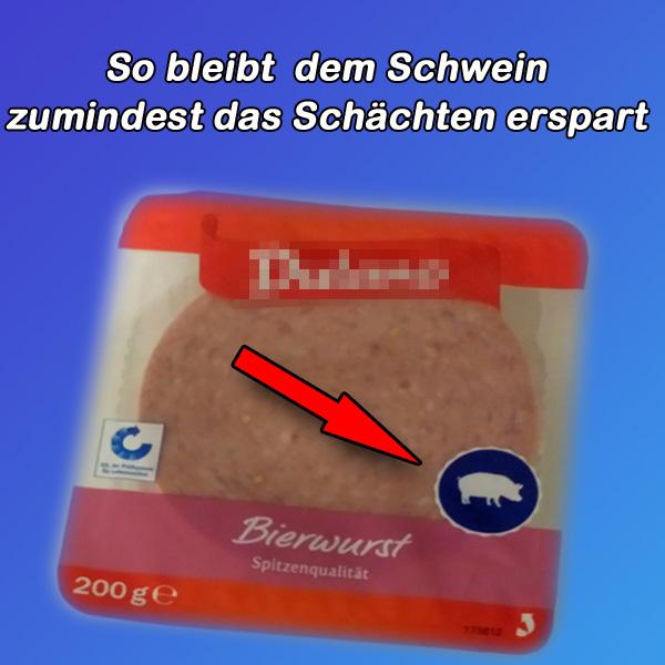 >> Aufatmen im Schweinestall  Diese Firma kennzeichnet ihre Wurstwaren, falls diese Schweinefleisch enthalten.  Damit können dann Diejenigen, für die diese Angabe seit Neuestem wichtig ist, von einem Kauf absehen. Igitt.   Jedenfalls bleibt dadurch den armen Schweinen das Schächten (betäubungsloses Schlachten) in unserem ehemals ethisch-moralischem Wunderbuntland erspart.  #schweinefleich  #wurst  #islam  #halal  #schächten #Date:02.2018#