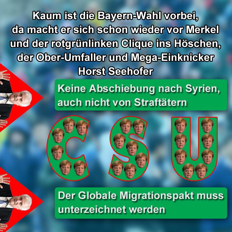 """>> Umfaller- und Einknicker-Artist Horst Seehofer nach der Bayern-Wahl schon wieder in Top-Form  Kaum ist die Wahl in #Bayern Vergangenheit, schon kehrt #Bundesinnenminister Horst """"ich bin das Schaf im Wolfspelz"""" #Seehofer wieder auf die eigentliche #CSU-Linie in Gestalt einer treuen Gefolgschaft zu das #merkel zurück. Schließlich braucht man jetzt erst mal nicht mehr auf den Wählerwillen zu schauen. Und das macht das Mitregieren im #grünrotlinken #Berlin erheblich entspannter. Schließlich ist man nicht mehr der Jüngste.  Und während sich in Berlin der Horsti mit dem Versuch einer Schärfung des konservativen Profils den Hintern aufreisst und die Finger verbrennt, sackt daheim in Bayern der lasche #Söder die Lorbeeren mit seiner grünlinken Affinitäts-Haltung ein. Nö, dann hat er auch keine Lust sich zu stressen, der Alpen-Löwe. #Date:11.2018#"""