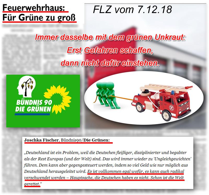>> LK NEA-BW > Neustadt: Unkraut contra Sicherheit | Grünen-Politik schafft Gefahren – ideologisierte Basis behindert Gegenmaßnahmen_ #Date:12.2018#