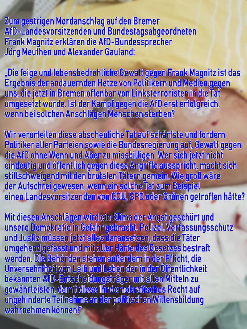 #magnitz  #anschlag  #afd  #attentat  #grüne  #linkspartei  #spd  #mordversuch  #vigilantismus  #antidemokraten  #anarchisten  #raf #Date:01.2019#
