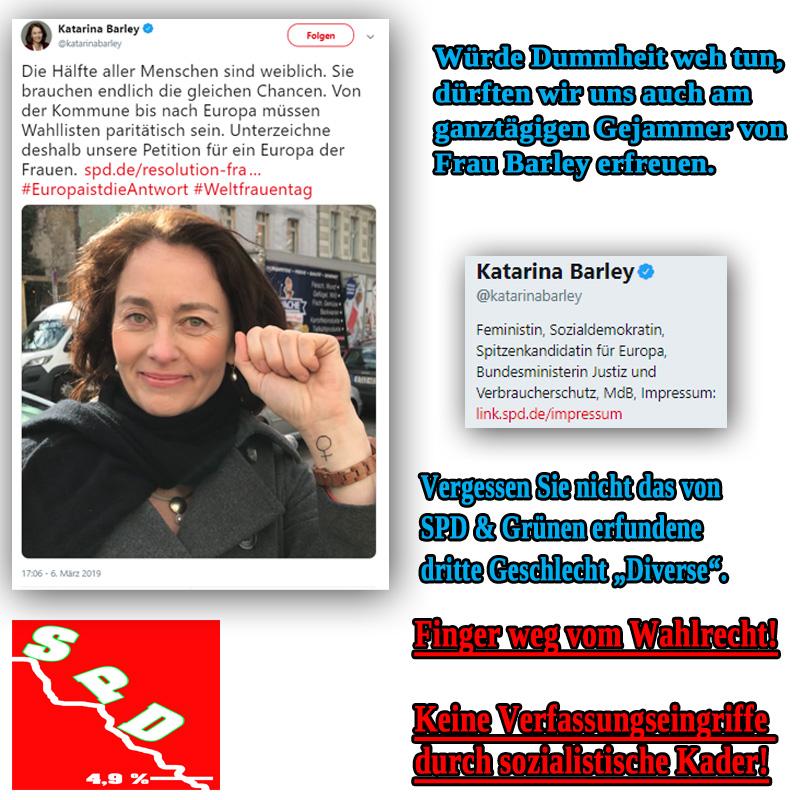 Bild zum Thema Justizministerin auf Abwegen _  Die rote #Feministin möchte das #Grundgesetz hinsichtlich des dort bestehenden umfassenden #Wahlrecht-s aufmischen. Fast täglich werden neue Wokenkuckucks-Heime errichtet. #parite  #paygap  Frau #Bundesjustizministerin Katarina #Barley, #SPD, posiert zum Zeichen ihrer Entschlossenheit und in Erinnerung an die sozialistischen Kader  auch schon mal mit geballter Faust, was uns aufgrund des mehr und mehr wachsenden radikalen Gedankenguts bei den #AnzugSozis (Abtreibung bis zum 9.Monat, antifa, Familiennachzug für Gefährder etc.pp.) schon lange nicht mehr wundert.   Es gibt Leute, die sind so was von fehl am Platz ...