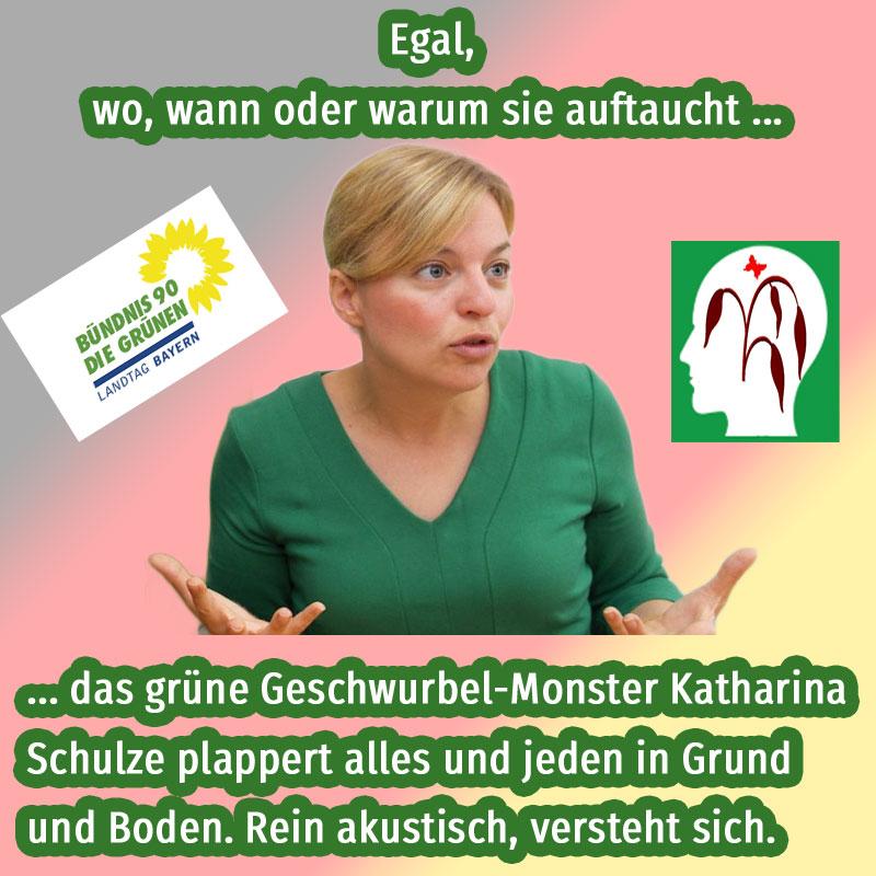 """Die #Grünen in #Bayern müssen sich Sorgen machen, dass ihnen nicht der #csu-Ministerpräsident #Söder die Schau stiehlt. Da muss sich die als """"bayerisches Worthülsen-Maschinengewehr"""" bekannte Katharina #Schulze schon mächtig ins Zeug legen, um mit ihrem inhaltslosen Gequassel am Söder vorbeizukommen. #Date:10.2019#"""