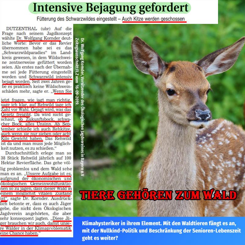 Bild zum Thema Tiere gehören zum Wald. Was der Vorsitzende des Ökologischen Jagdvereines in Bayern, Dr. Wolfgang Kornder hier raushaut, ist ein starkes Stück. Zynismus pur.