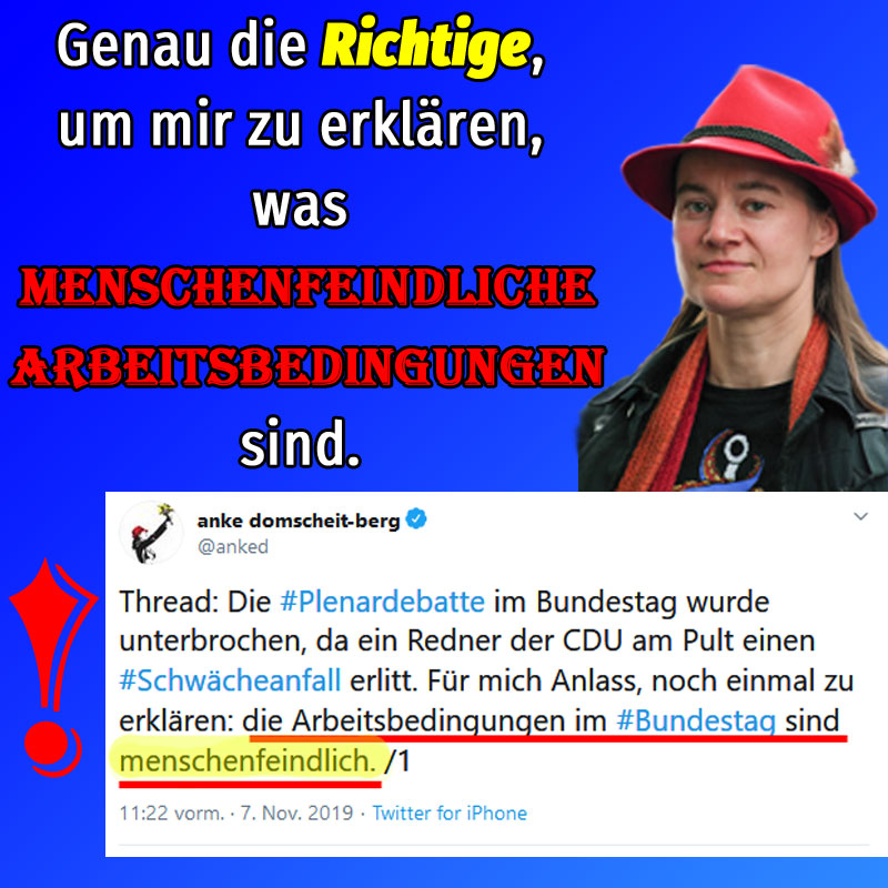 Bild zum Thema Frau Domscheit-Berg von der Linkspartei erklärt den Bundestag zum menschenfeindlichen Arbeitsplatz