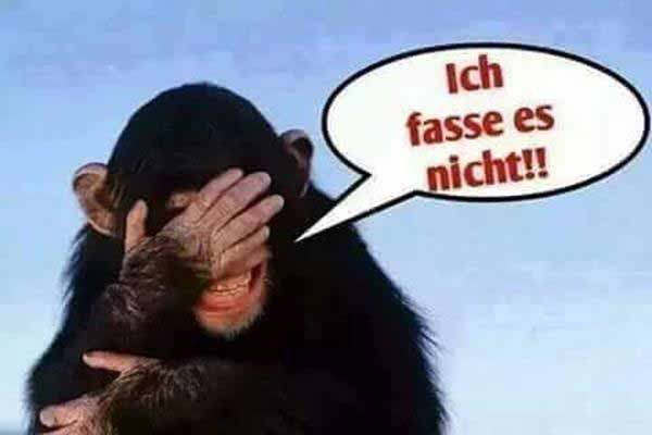 Über Merkel wundert sich sogar ein Schimpanse. #Date:12.2015#