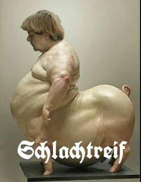 Merkel ist schlachtreif. Merkel muss weg.  #Date:01.2016#