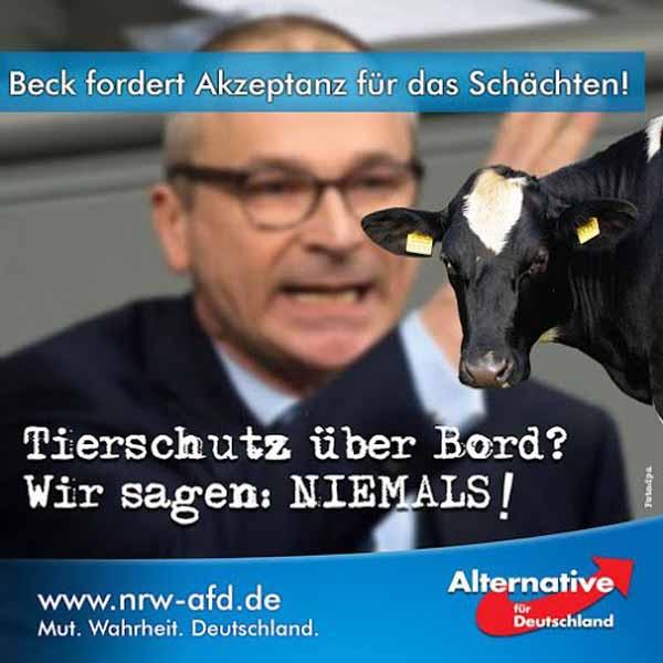 Volker Beck (Grüne) fordert Akzeptanz grundgesetzwidrig Akzeptanz für das Schächten von Tieren für Moslem-Invasoren. #Date:03.2016#