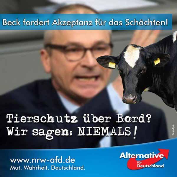 Wer Grün wählt, wählt Tierleid. NIEMALS. Moslems vegetarisieren. #Date:04.2016#